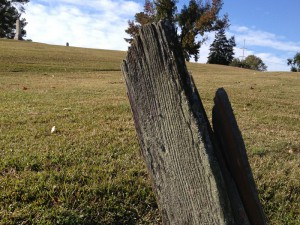 Rare Surviving Wood Grave Marker  Photo by Shelby Reap